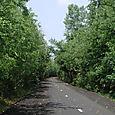 Genoa Trail 2